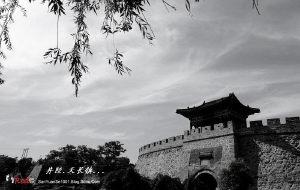 【井陉图片】上山下乡——天长镇(一)