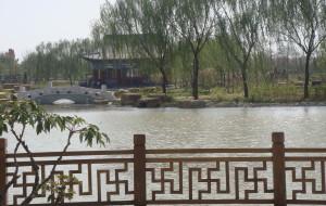 【菏泽图片】媳妇之   曹州牡丹园~~~~地点:山东菏泽 曹州牡丹园