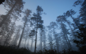 【眉山图片】2010年10月 云雾暮光瓦屋山记