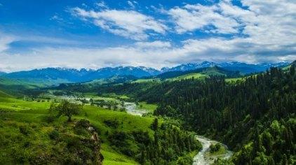 恰西风景区(国家级森林公园)位于巩留东南部山区,距离县城78公里