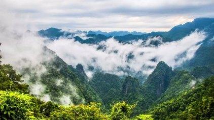 桂平龙潭国家森林公园门票