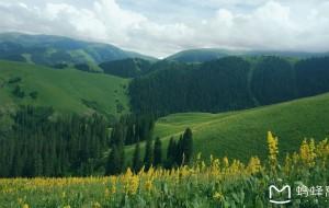 【轮台图片】一路向前,看祖国大好山河~~记我们的新疆西藏游(独库公路~沙漠公路~阿里大北线)