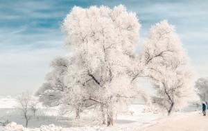【雪乡图片】沉浸寒冷—雾凇、冰灯、雪乡