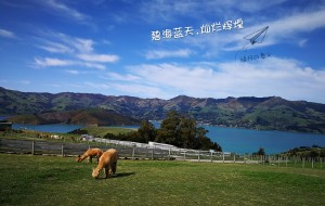 【因弗卡吉尔图片】女司机灿烂dë3000公里自驾游 —— Holiday in NZ