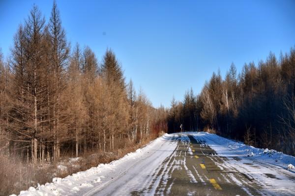 雪乡,大年初二义携家带口无反顾的踏上了冬季呼伦贝尔的雪地。 先从衣食住行来个简单的总结吧:北方的冬季是干冷,冬季呼伦贝尔室外的温度在零下20-30度左右,极冷村也有零下58度的极寒天气,无风的天气感觉也是可以接受。但是所有的室内包括汽车都有暖气(再次羡慕北方的童鞋,有机会来体验一下江南的湿冷那才是慢慢让你透心凉,而且冬季的南方基本上室内和室外没有多少温差。)哈哈,所以这次学会了新技能:出门穿穿穿,进屋脱脱脱并且相当麻溜!因为5年没有在家过春节,老父老母想我的紧,这次硬要和我一起出来,开始也有些担心这7-8