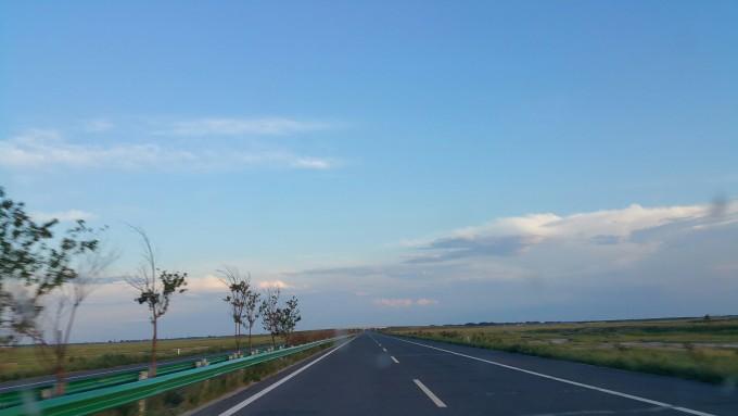 游扎龙丹顶鹤保护基地[强]阴天雷雨,终于在下午第三场放飞表演时放晴