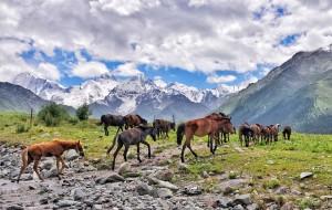【伊犁图片】走在天山南北,加班狗的新疆出逃记