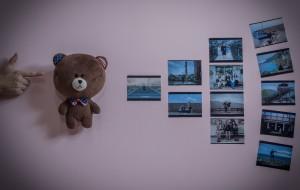 【恒春图片】布朗熊的世界#繁体的台湾向左~简写的青春靠右~