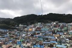 我带着孩子们,你带着我,一起去釜山看海