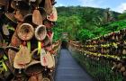 三亚呀诺达雨林文化区门票(多种套餐可选)
