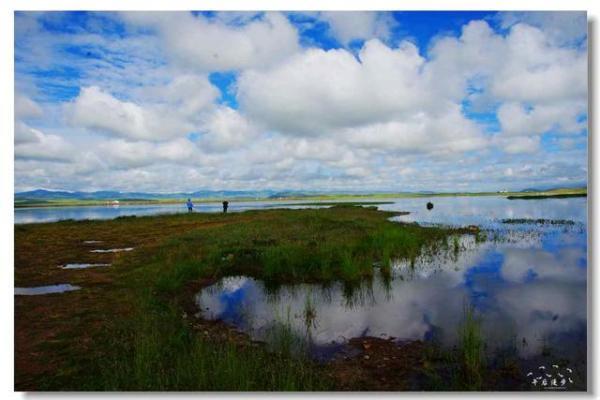 西部之旅 走进世界最大的湿地草原甘南玛曲,玛曲旅游