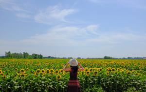 【独山子图片】种草新疆·我喜欢的风景你都有