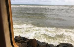 【本托塔图片】7日5晚举家带娃 去看一看印度洋上的眼泪——斯里兰卡