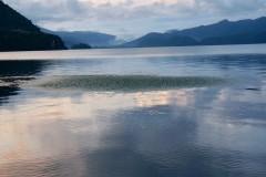 泸沽湖、沙溪----温柔的慢时光