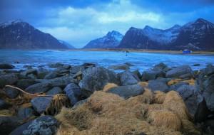 【北欧图片】#我的2017#  到过北极圈、看过大迁徙、走过洛基山