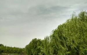 【荥阳图片】郑州洞林湖