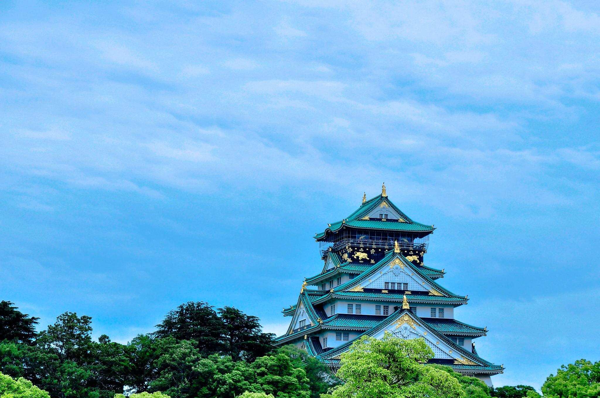 【星级游记】蜜月关西——大阪、奈良、神户、京都、宇治、名古屋_游记