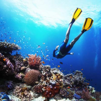 珊瑚岛,寻梦岛,白沙岛