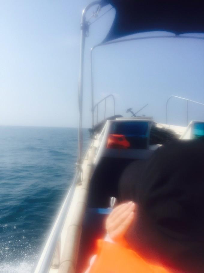 南澎列岛之芹澎岛,南澳岛自助游攻略 - 马蜂窝