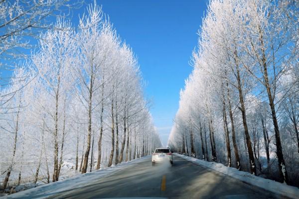 沈阳—哈尔滨—伊春丨跟队自驾出发林海雪原