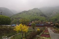 再拜五台山--------爱五台山环境美,更爱五台山佛教圣地那份心灵的宁静。
