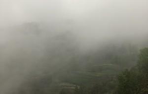 【成县图片】雨🌧️☔️中漫步,乡村行