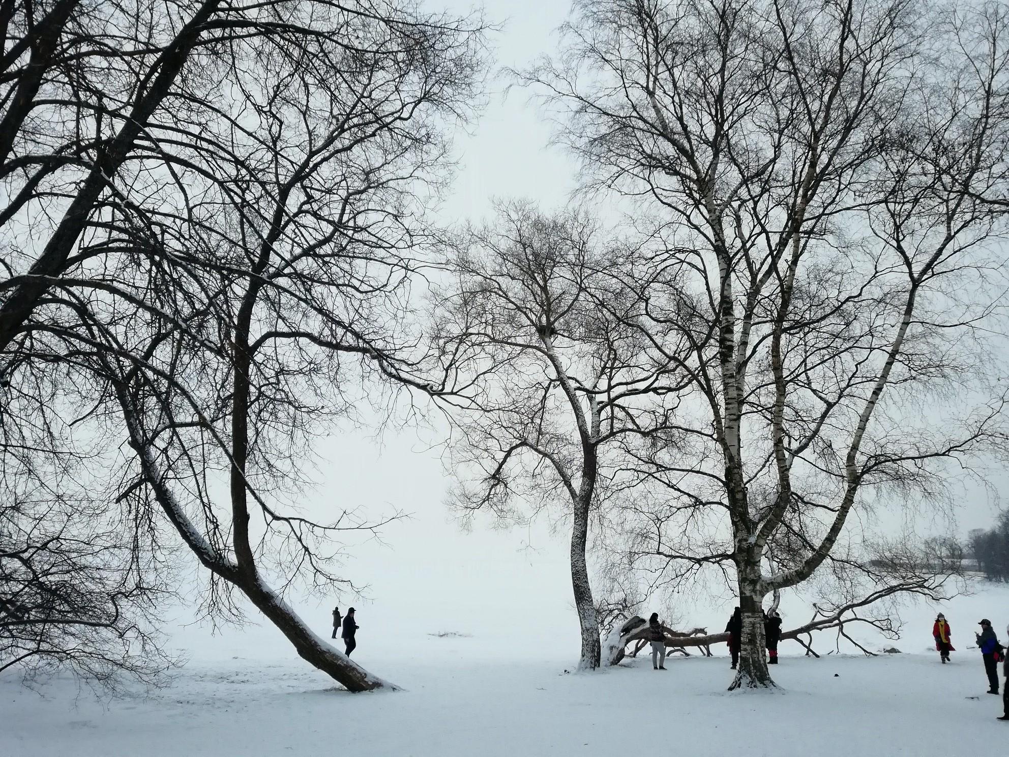 寒い冬~❄~莫斯科&圣彼得堡_游记