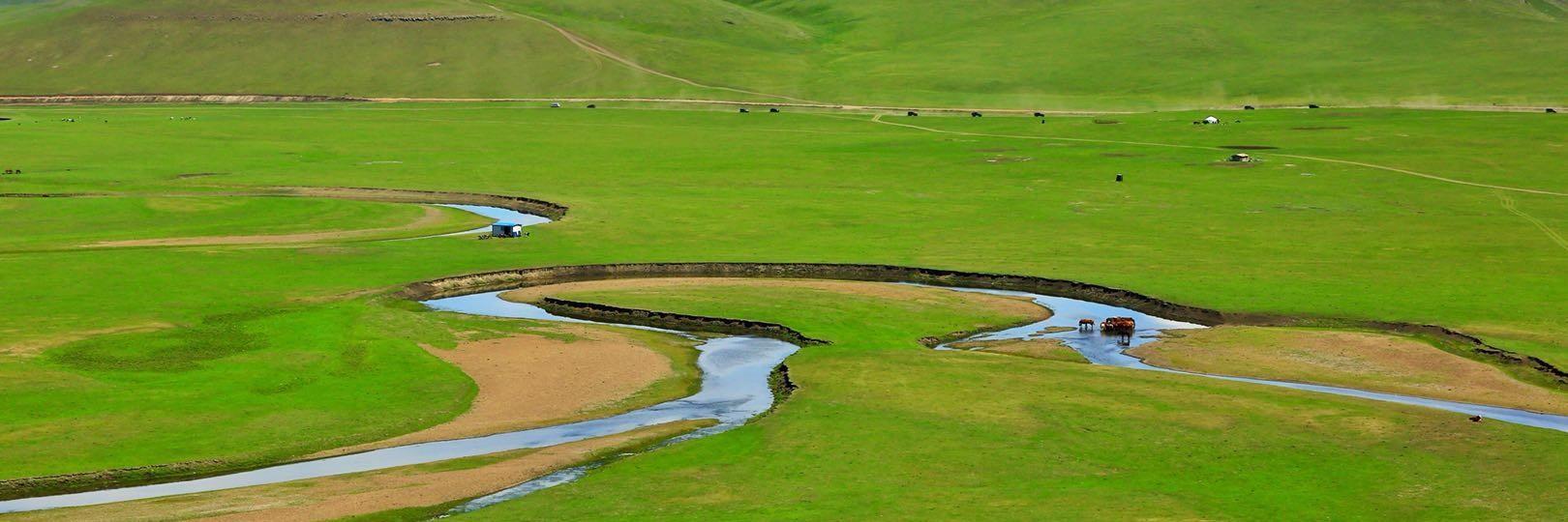 一个人的旅行,呼伦贝尔大草原《梦中天堂》涌入呼伦贝尔大草原的怀抱,内蒙古旅游yabo88亚博官网