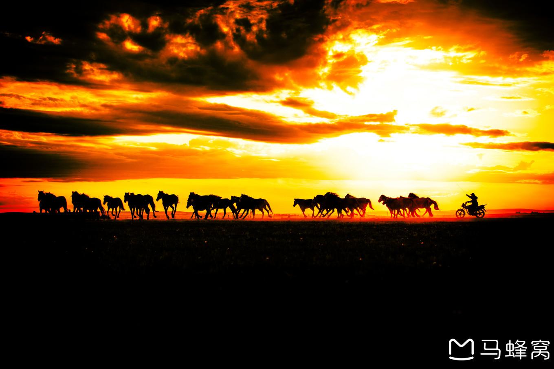 《美醉了—内蒙古呼伦贝尔大草原》—内蒙古呼伦贝尔大草原