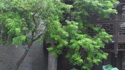扬州娱乐-花局里街区