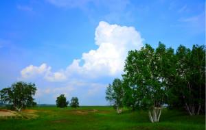 【木兰围场图片】2012端午假日木兰围场游记---一个人的草原