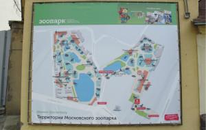 俄罗斯娱乐-莫斯科动物园