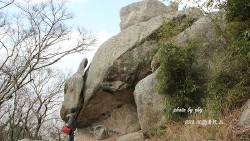 普陀山景点-二龟听法石