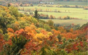 【渥太华图片】渥太華之秋