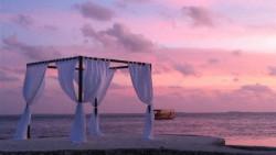 马尔代夫景点-莉莉岛(Lily Beach)