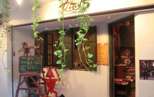 台北娱乐-女巫店
