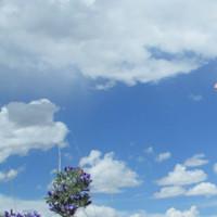 天高云淡天蓝蓝