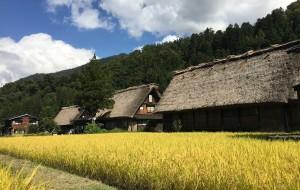 【白川乡图片】日本 大阪-神户-京都-白川乡十日游