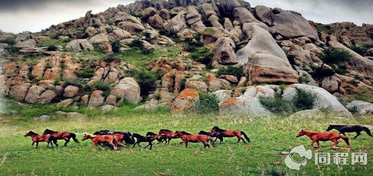 哈撒儿旅游景区