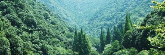距宁海城区25公里,宁波市区100公里,拥有9627亩的森林资源,景区群峰
