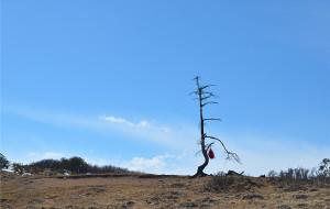 【汉源图片】骄顶山,不是高原的反应,而是美的让你窒息。