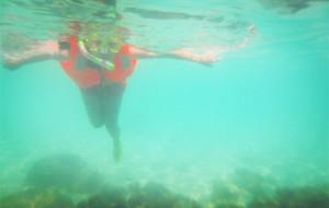 海南娱乐-加井岛潜水