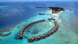 马尔代夫景点-可可棕榈波杜希蒂岛度假村 Coco Palm Bodu Hithi Maldives