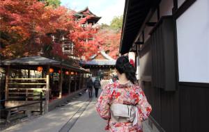 【北海道图片】(更新完毕)东瀛漫记--日本枫雪自由行实用信息及经验总结