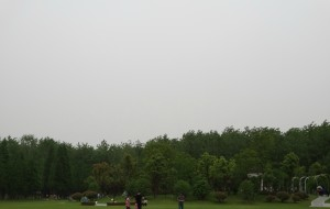 【合肥图片】#2015旅程总结# 合肥滨湖湿地森林公园