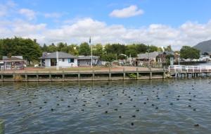 【罗托鲁瓦图片】新西兰明珠...罗托鲁瓦湖风景实拍之二
