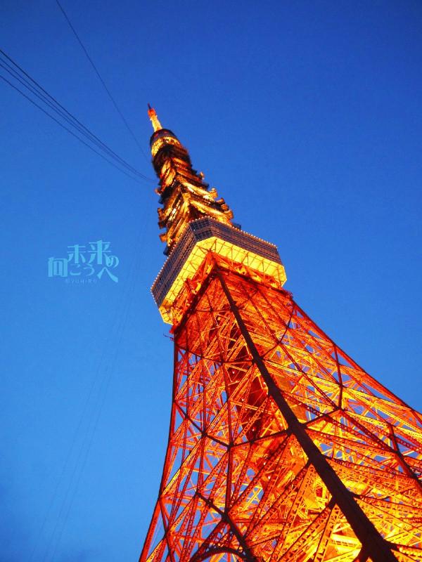 jp/江之岛灯塔官网:http://enoshima-seacandle.