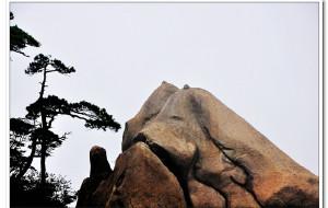 【三清山图片】江西.福建.浙江三省19个目的地25天自由行之三   [ 三清山 ]