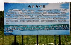【锡林浩特图片】2014年8月北京-太仆寺-锡林浩特-达里湖-黄岗梁-热水-乌兰布统-北京