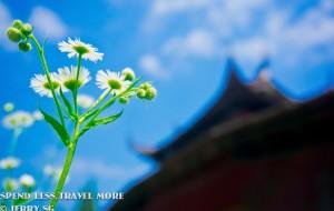 【温州图片】奇幻泰顺 浙南净土--追寻中国最美廊桥